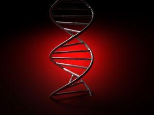 Conheça algumas Síndromes decorrentes de Mutação