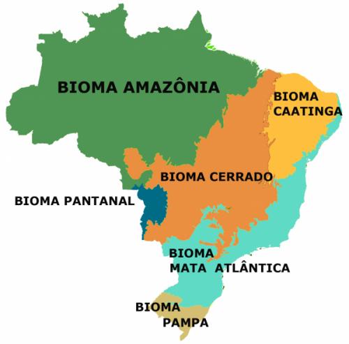 bioma1