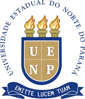 UENP Abre Inscrições no Processo Seletivo Simplificado 2018 (EaD)