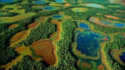 Sustentabilidade e Meio Ambiente no Enem