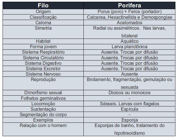 ebook humanbiologie