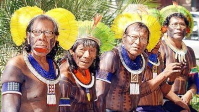 Mais palavras indígenas do cotidiano