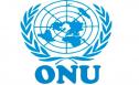 Entenda o Que É a Organização das Nações Unidas – ONU